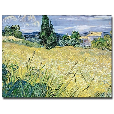 Trademark Fine Art Vincent van Gogh 'Landscape with Green Corn, 1889' Canvas