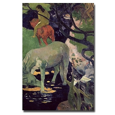 Trademark Fine Art Paul Gauguin 'The White Horse, 1898' Canvas Art 22x32 Inches