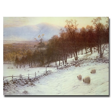 Trademark Fine Art Joseph Farquharson 'Snow Covered Fields with Sheep' Canvas