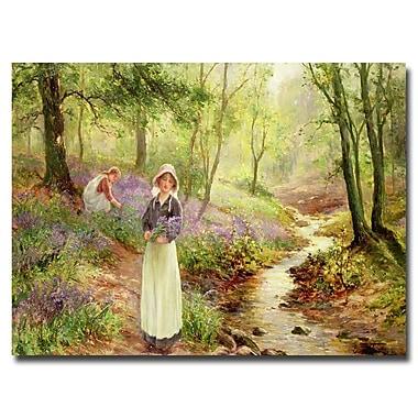 Trademark Fine Art Ernest Walbourn 'The Bluebell Glade' Canvas Art