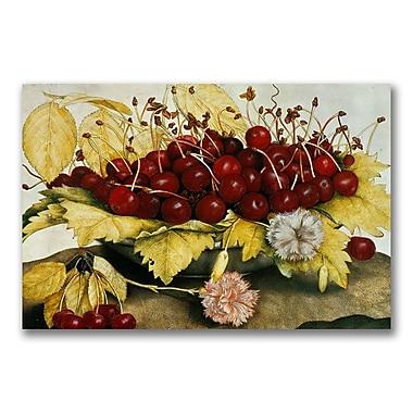 Trademark Fine Art Giovanna Garzoni 'Cherries and Carnations' Canvas Art