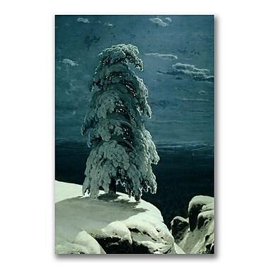 Trademark Fine Art Ivan Shishkin 'In the Wild North' Canvas Art