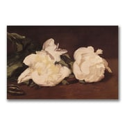 Trademark Fine Art Eduard Manet 'Branch of White Peonies' Canvas Art