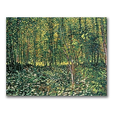 Trademark Fine Art Vincent Van Gogh 'Trees and Undergrowth, 1887' Canvas Art