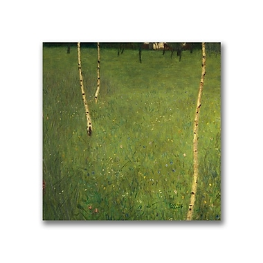 Trademark Fine Art Gustav Klimt 'Farmhouse with Birch Trees' Canvas Art
