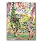 Trademark Fine Art Vincent Van Gogh'The Garden of St. Pauls Hospital'Canvas Art