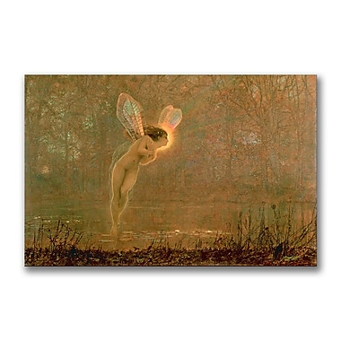 Trademark Fine Art John Grimshaw 'Iris' Canvas Art 22x32 Inches
