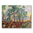 Trademark Fine Art Vincent Van Gogh 'The Garden of St. Paul' Canvas Art