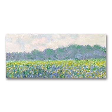 Trademark Fine Art Claude Monet 'Field of Yellow Irises at Giverny' Canvas Art 14x32 Inches
