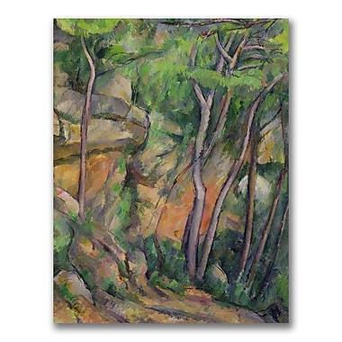 Trademark Fine Art Paul Cezanne 'In the Park of Chateau Noir' Canvas Art 24x32 Inches