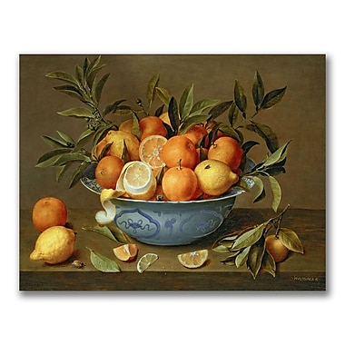 Trademark Fine Art Jacob van Hulsdonck 'Still Life with Oranges' Canvas Art