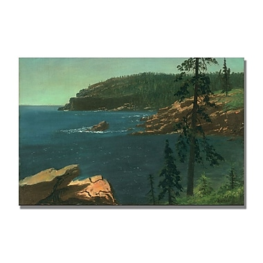 Trademark Fine Art Albert Biersdant 'California Coast II' Canvas Art 22x32 Inches