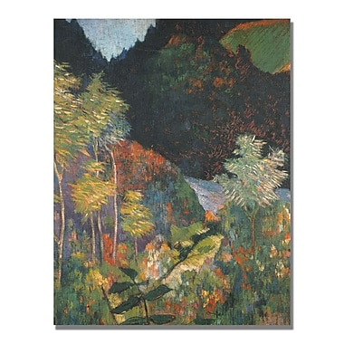 Trademark Fine Art Paul Gauguin 'Landscape' Canvas Art 35x47 Inches