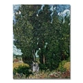 Trademark Fine Art Vincent Van Gogh 'The Cypresses' Canvas Art
