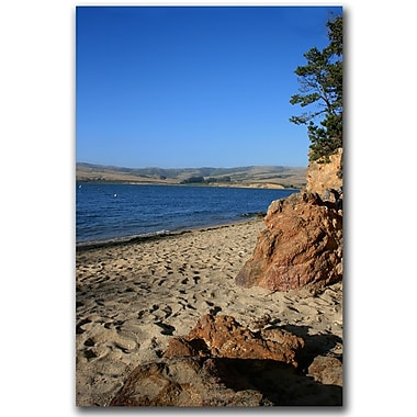 Trademark Fine Art Colors of Shell Beach by Colleen Proppe-Canvas Art