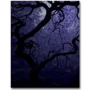 Trademark Fine Art David Farley 'Japanese Tree III' Canvas Art 35x47 Inches
