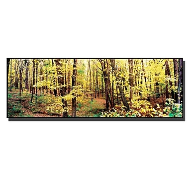 Trademark Fine Art Preston 'Trees' Canvas Art 8x24 Inches