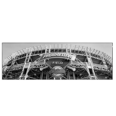 Trademark Fine Art Progressive Field by Preston-Ready to Hang Art