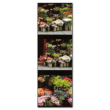 Trademark Fine Art Parisian Flower Stand by Preston-Canvas Art 6x19 Inches
