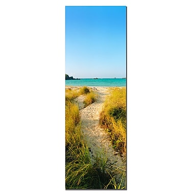 Trademark Fine Art Bermuda Beach Trail by Preston-Ready to Hang 16x48 Inches