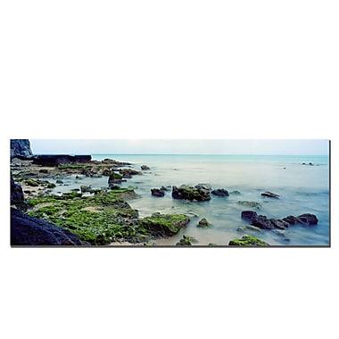 Trademark Fine Art Bermuda Coast by Preston-Ready to Hang 16x48 Inches