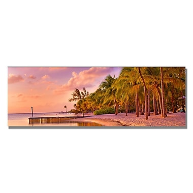 Trademark Fine Art Preston 'Cayman Beach' Canvas Art 12x32 Inches