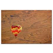 Trademark Fine Art Lonesome Road Balloon by AIANA Ready to Hang