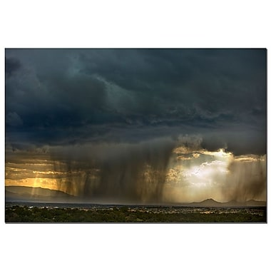 Trademark Fine Art Summer Storm by AIANA Canvas Art Ready to Hang 16x24 Inches