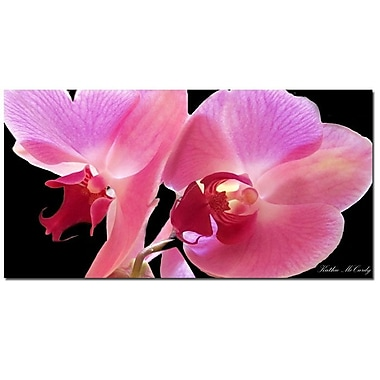 Trademark Fine Art Kathie McCurdy 'Orchid' Canvas Art 10x19 Inches