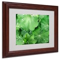 Kathie McCurdy 'Water Droplets' Matted Framed Art - 16x20 Inches - Wood Frame