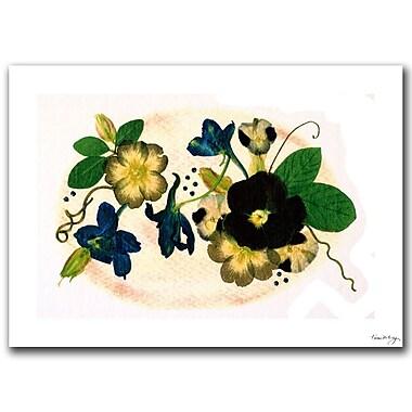 Trademark Fine Art Kathie McCurdy 'Cleome' Canvas Art