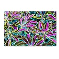 Trademark Fine Art Kathie McCurdy 'Tropical Neon' Canvas Art