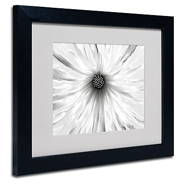 Trademark Fine Art Kathie McCurdy 'White Garden' Matted Art Black Frame 16x20 Inches