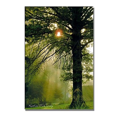 Trademark Fine Art Kathie McCurdy 'Morning Glory' Canvas Art