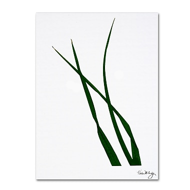 Trademark Fine Art Rain Forest by Kathie McCurdy Canvas Art Ready to Hang, KM018-C1824GG