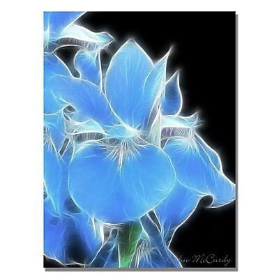 Trademark Fine Art Kathie McCurdy 'Big Green Leaf' Canvas Art