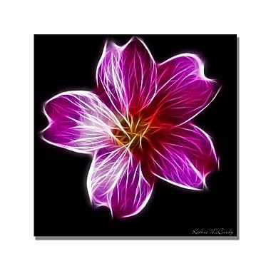 Trademark Fine Art Kathie McCurdy 'Dandelion Seed Head Full' Canvas Art