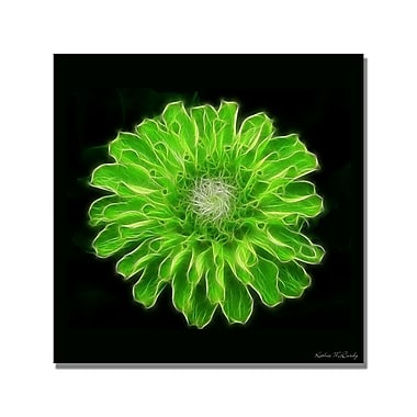 Trademark Fine Art Kathie McCurdy 'Hens and Chicks' Canvas Art