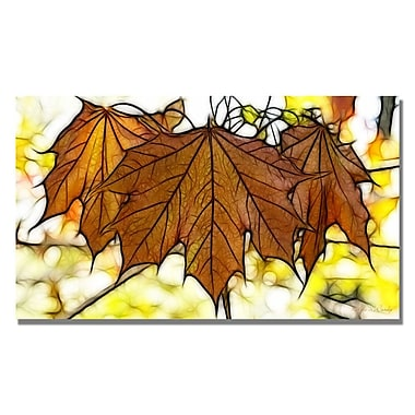 Trademark Fine Art Kathie McCurdy 'Maple Leaves' Canvas Art 18x32 Inches