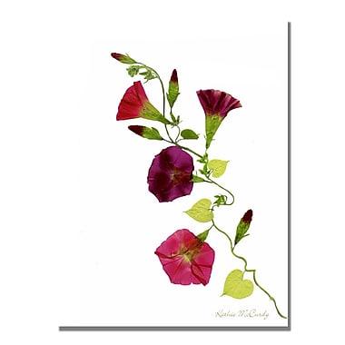 Trademark Fine Art Kathie McCurdy 'Nastursiam Begonias' Canvas Art