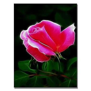 Trademark Fine Art Kathie McCurdy 'Pink Rose Abstract' Canvas Art 22x32 Inches