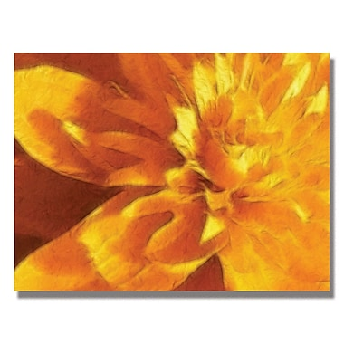 Trademark Fine Art Kathie McCurdy 'Carmel Yellow Mum' Canvas Art 18x24 Inches