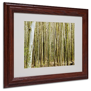 Kathie McCurdy 'Forest Floor Spring' Matted Framed Art - 16x20 Inches - Wood Frame