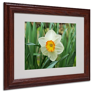 Kathie McCurdy 'Furnace Run Daffodil' Matted Framed Art - 16x20 Inches - Wood Frame
