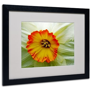 Kathie McCurdy 'Furnace Run Daffodil Large' Matted Framed - 11x14 Inches - Wood Frame