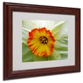 Kathie McCurdy 'Furnace Run Daffodil Large' Matted Framed - 16x20 Inches - Wood Frame