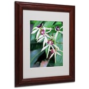 Kathie McCurdy 'Orchids II' Matted Framed Art - 16x20 Inches - Wood Frame