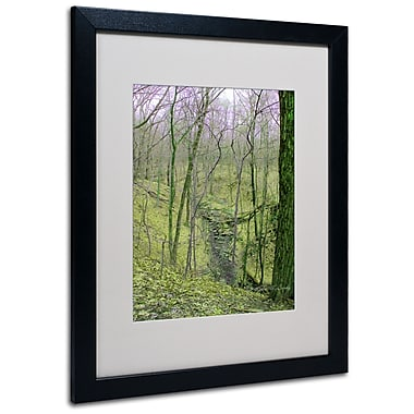 Kathie McCurdy 'Surreal Woods' Matted Framed Art - 11x14 Inches - Wood Frame