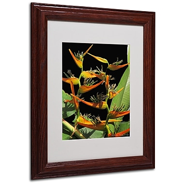 Kathie McCurdy 'Tropical Paradise' Matted Framed Art - 16x20 Inches - Wood Frame