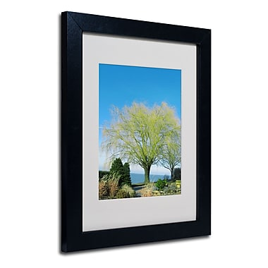 Trademark Fine Art Kathie McCurdy 'Wind In the Willow' Matted Art Black Frame 11x14 Inches